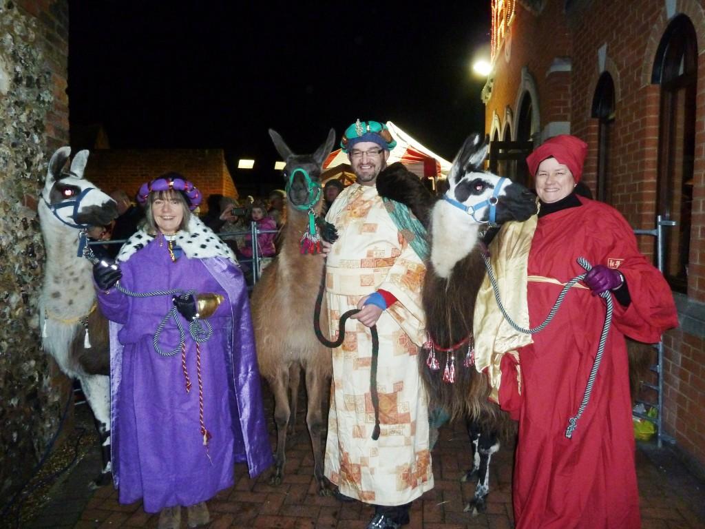 Marlow Llama ChristmasNativity
